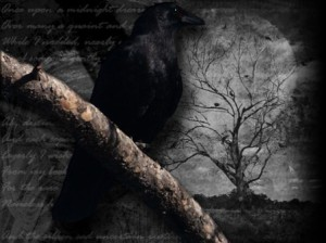 The Raven: Black Bird of Ill Omen | Alyson Dunlop's Blog